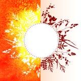 在水彩背景的叶子 免版税库存图片