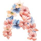 在水彩花,被隔绝手拉在白色背景,婚姻的设计上写字,英语字母表A  免版税库存图片