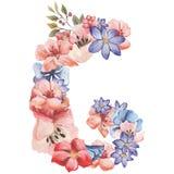 在水彩花,被隔绝手拉在白色背景,婚姻的设计上写字,英语字母表G  库存图片