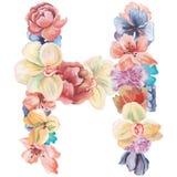在水彩花,被隔绝手拉在白色背景,婚姻的设计上写字,英语字母表H  免版税库存照片