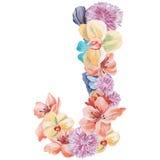 在水彩花,被隔绝手拉在白色背景,婚姻的设计上写字,英语字母表J  库存照片