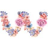在水彩花,被隔绝手拉在白色背景,婚姻的设计上写字,英语字母表W  库存图片