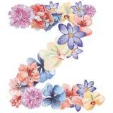 在水彩花,被隔绝手拉在白色背景,婚姻的设计上写字,英语字母表Z  库存照片