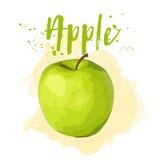 在水彩画的苹果计算机 传染媒介EPS 10 免版税库存照片