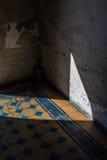 在阴影的老拼花地板 罗马建筑学 免版税库存图片