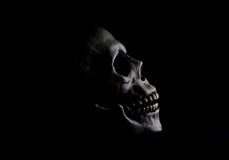 在阴影的头骨 库存图片