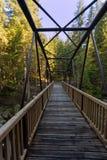 在维德拉河的桥梁 库存照片