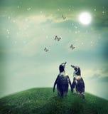 在幻想风景的企鹅夫妇 免版税库存图片