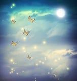 在幻想moonligt风景的蝴蝶 免版税库存照片