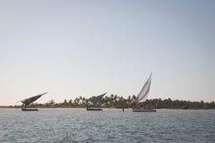 在巴拉岛海岸的单桅三角帆船在Tofo附近的 免版税库存图片