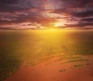 在巴拉那河上的飞行 免版税图库摄影