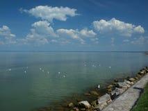 在巴拉顿湖的秋天 免版税图库摄影