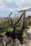 在维拉麸皮里面的喷泉 免版税库存照片