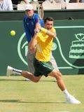 在戴维斯杯期间的澳大利亚网球员伯纳德・托米奇选拔反对杰克・索克 库存照片