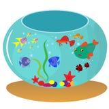 在水族馆的十二水族馆鱼游泳 也corel凹道例证向量 免版税库存照片