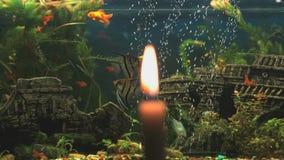 在水族馆的背景的灼烧的蜡烛 股票录像