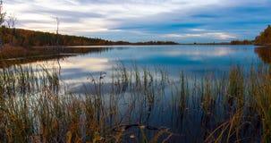 在黎明前的Forest湖 库存图片