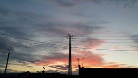 在黎明背景的电线  库存例证