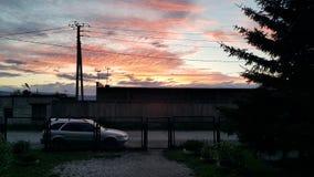 在黎明背景的电线  向量例证