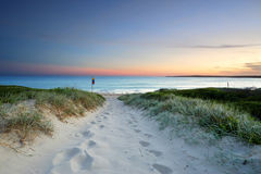 在黄昏日落澳大利亚的沙滩足迹 免版税库存图片