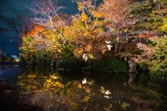 在黄昏的公园寺庙 免版税图库摄影