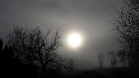 在黄昏的月光 免版税库存图片