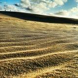 在黄昏的沙丘 库存照片