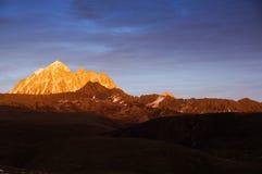在黄昏的金黄小山 库存照片