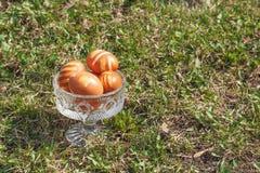在水晶花瓶的一些复活节彩蛋在绿色草坪 免版税库存照片
