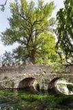 在水晶wather的古老bridje在Ninfa庭院里  图库摄影