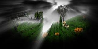 在黑暗之间的绿色草甸 库存图片
