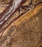 在黑暗和温暖的颜色的自然美丽的大理石 库存图片