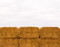 在阴暗天空的六被堆积的黄色干草捆 库存图片