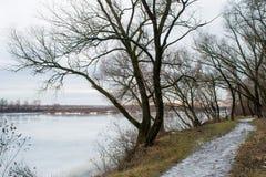 在黑暗的冬天森林附近的雪道接近熔化的河 库存照片