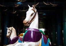 在黑暗的散步的两匹白色转盘马 免版税图库摄影