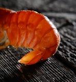 在黑暗的木背景的开胃煮沸的龙虾 免版税库存图片