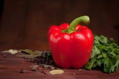 在黑暗的木背景的红辣椒用草本 库存照片