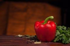 在黑暗的木背景的红辣椒用草本 库存图片