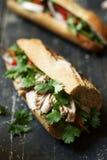 在黑暗的木背景的金枪鱼三明治 免版税库存图片
