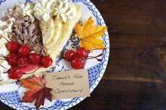在黑暗的木头的感恩饼与拷贝空间 免版税库存图片