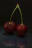 在黑暗的演播室射击的樱桃 库存照片