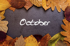 在黑暗的石背景的秋叶框架 10月概念墙纸 免版税图库摄影