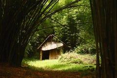 在黑暗的竹子的老木小屋 库存图片
