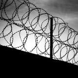 在黑暗的篱芭的铁丝网 免版税库存图片
