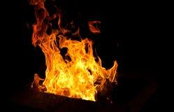 在黑暗的背景的大火焰 免版税图库摄影