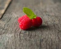 在黑暗的背景的成熟水多的莓 新绿色留下薄菏 库存图片
