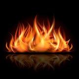 在黑暗的背景的火。 库存照片