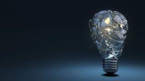 在黑暗的背景的电灯泡 残骸 免版税图库摄影