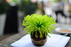 在黑暗的花瓶的绿色花 免版税库存图片