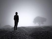 在黑暗的雾 库存图片